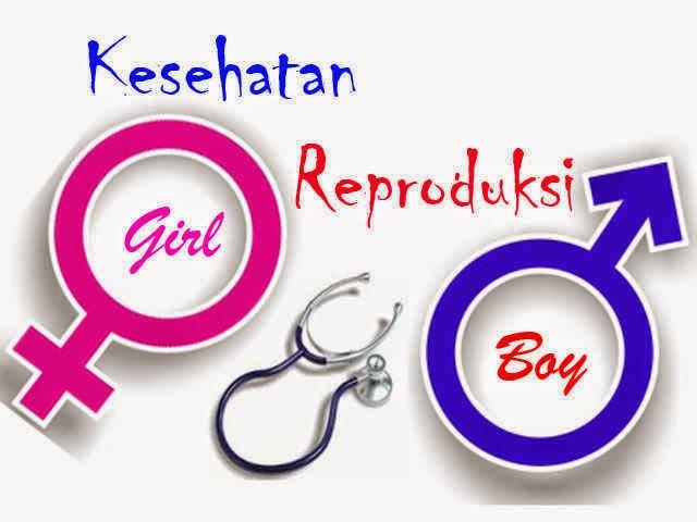 informasi kesehatan reproduksi remaja